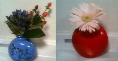 いただいたお花です。